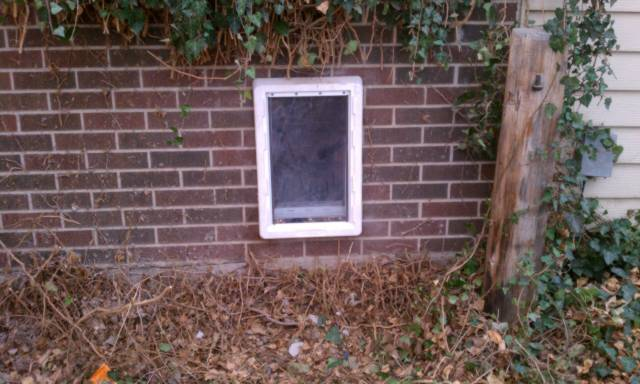 Doggie Door - Lakewood